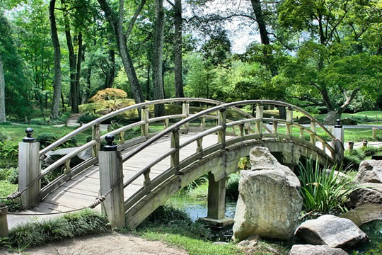 Japanese bridge inside Botanical Garden